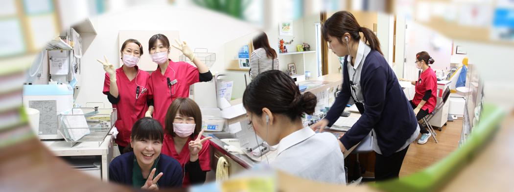 歯科医院スタッフ